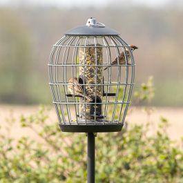Beskyttet fodersøjle til småfugle Aura