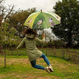 Paraply med havefugle