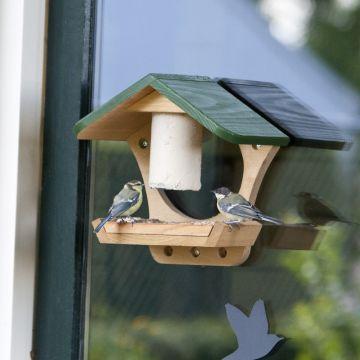 Fågelbord Michigan för fönster