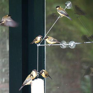 """Fönsterupphängning """"BirdSwing"""""""