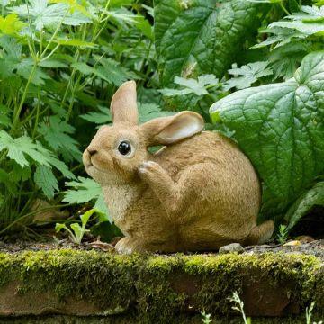 Kanin (siddende)