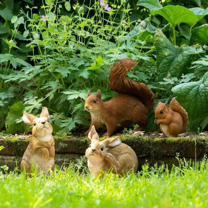 Lille rødt egern (ædende)