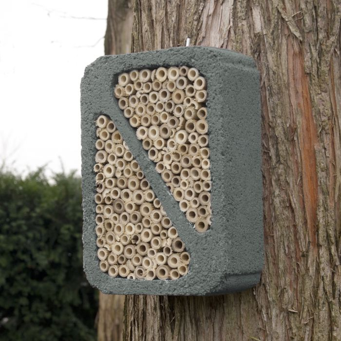 Insektsblock