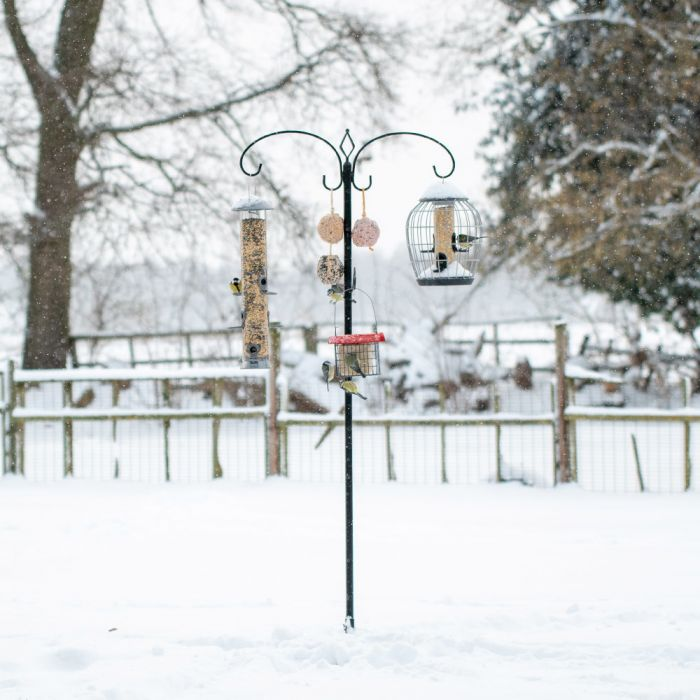 Fågelmatarstation fågelmatare