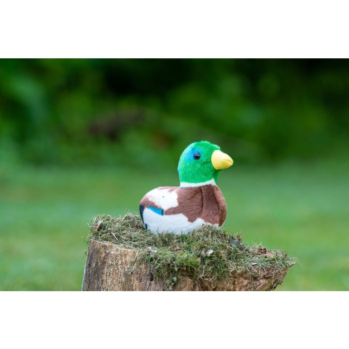 Singing Bird Soft Toy And