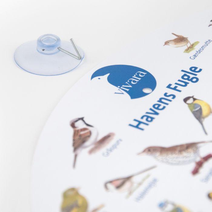 Plakat med havens fugle til vinduet
