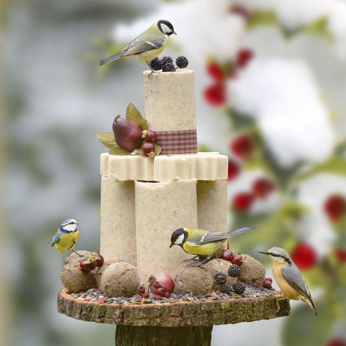 Fåglarnas vintertårta